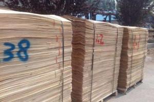 采购:桦木单板