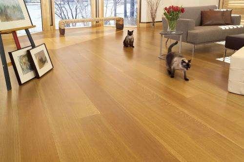 究竟地板是不是密度越大越好呢?