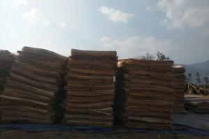 胶木杂木单板出售