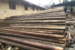 长期供应旧杉木檩条