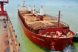 国内主要木材港口到货量、库存量与价格、行情分析
