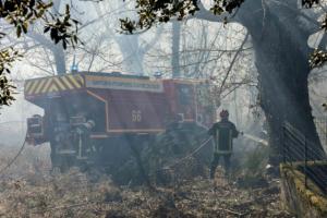 科西嘉岛森林火灾 大火吞噬超过1500公顷的森林