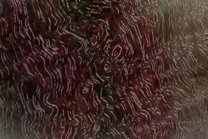 小叶紫檀牛毛纹的几种表现形式!