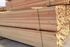 吉安辐射松建筑方木多少钱一方