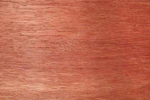 柳桉木是什么木