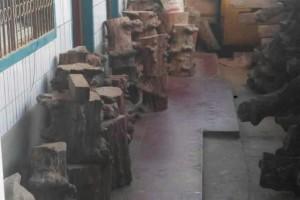 缅甸红椆木原木厂家批发