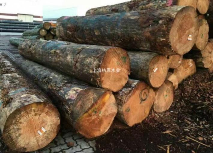 2018年中国进口新西兰原木1737.91万立方米