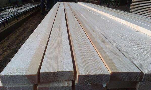 云杉木材的缺点