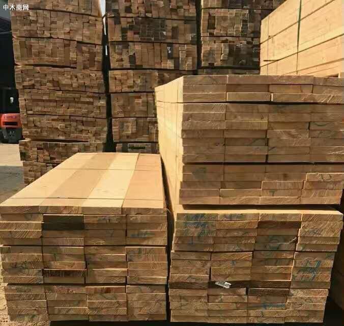 濮阳木材加工产业建筑工程木方厂家批发