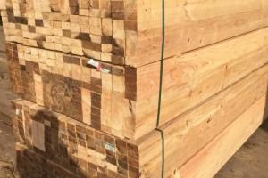 濮阳建筑用的木材 建筑木方厂家批发