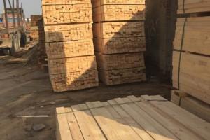 三门峡建筑常用木材辐射松建筑木方批发