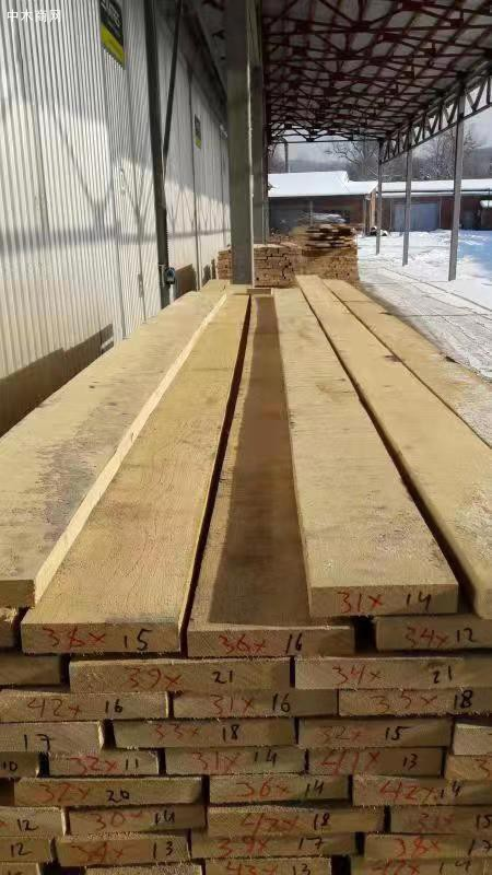 俄罗斯OCK LLC木业公司中国代表:厉丙东