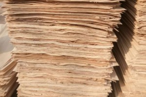 宿迁泗洪大力发展木材加工业 生产线一片繁忙