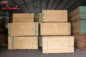 优质进口相思木,新西兰辐射松,桉木板材厂家批发