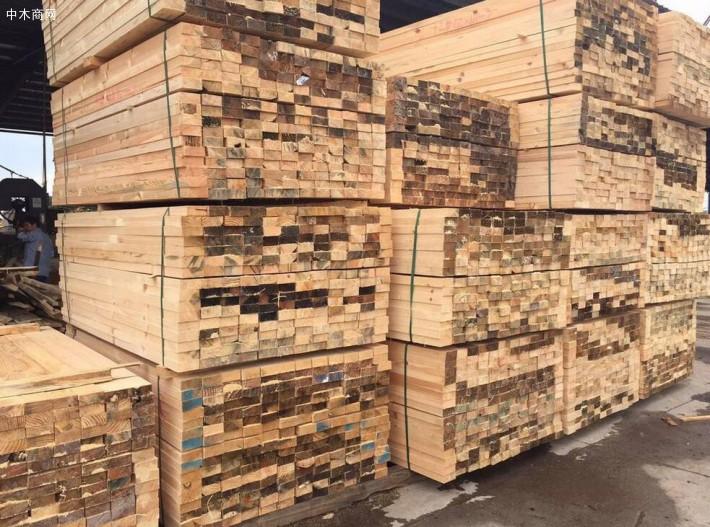 三门峡辐射松建筑工程木材,工地木方