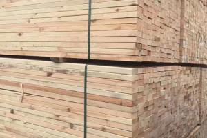 周口建筑方木厂家
