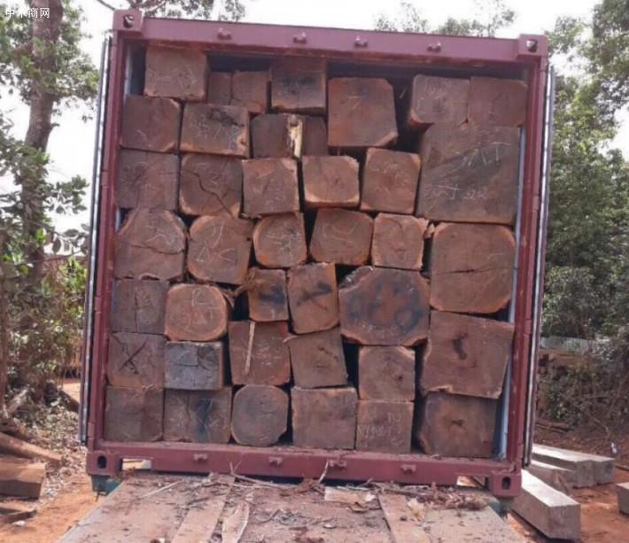 柬埔寨将全面禁止木材出口-巴里黄檀