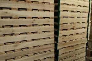泰兴虹桥镇开展木制品加工企业联合检查