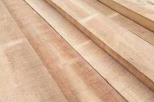 白杨木烘干板,绿色家具的首选
