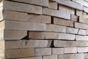 湖南安乡县开展木材加工企业安全生产专项整治行动