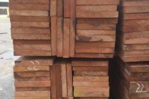 加蓬政府同意出口锯好的巴花
