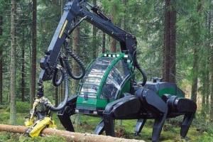 惊爆!俄罗斯木材林场直供,活动价前所未有!名额预定前50名