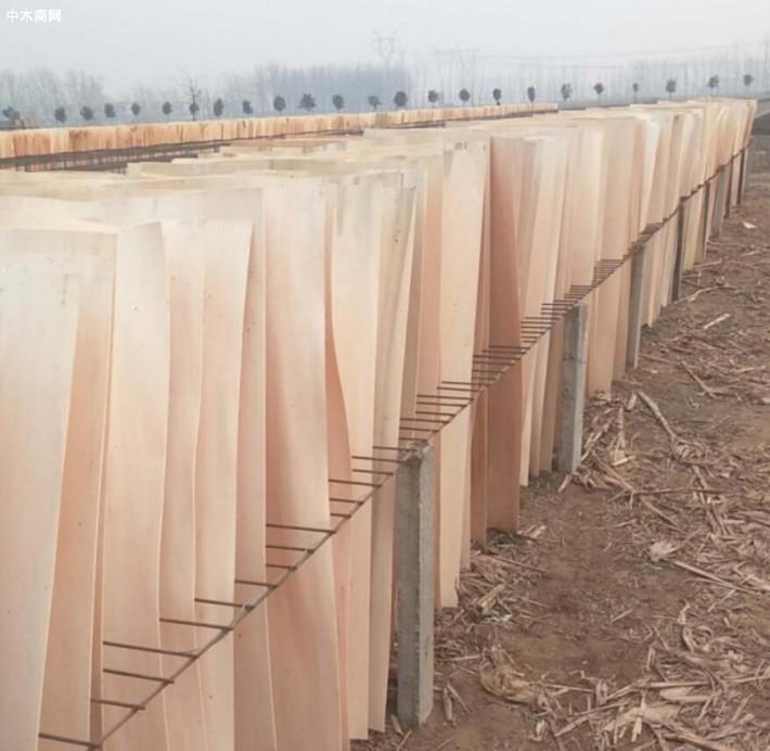 杨木三拼木皮的特点