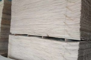 杨木原色面皮高清图片