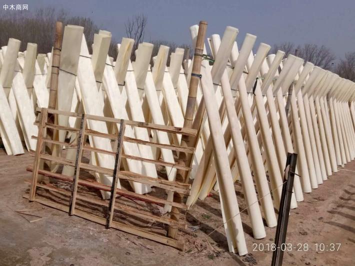 新鲜出炉的杨木漂白面皮大量出售