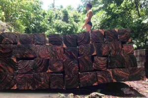 正宗印尼黑檀木板材高清图片