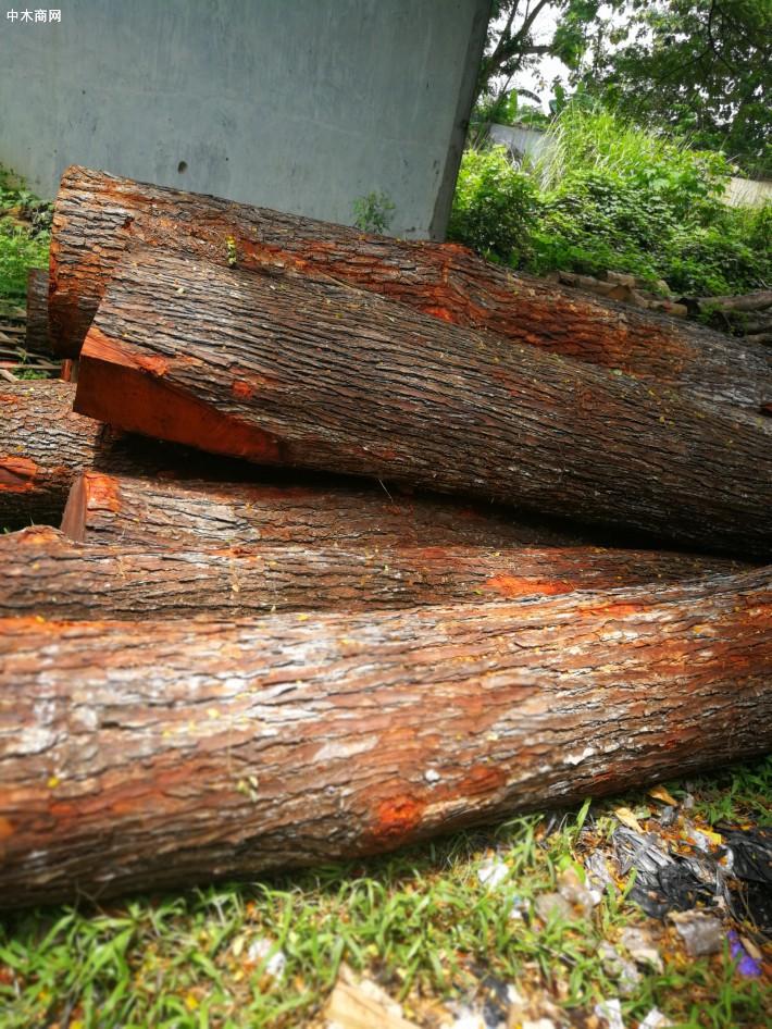 其实市场上能够用到全印尼柚木制造的家具很少的