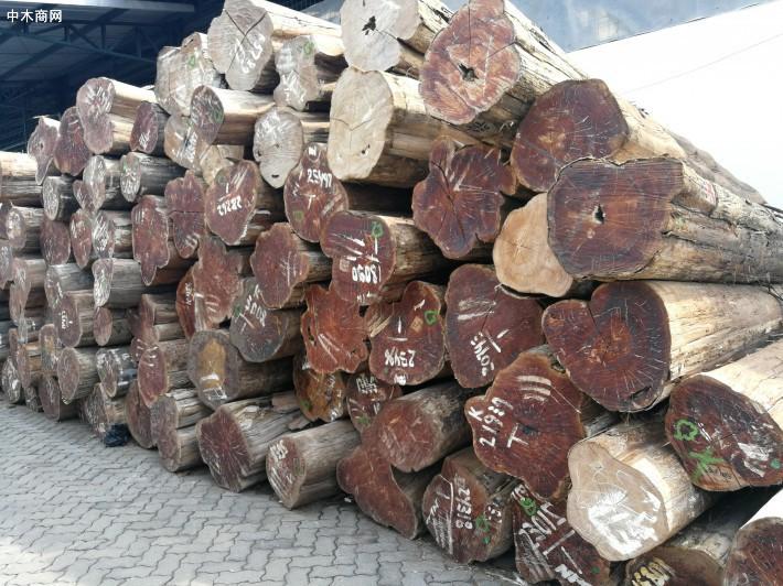 广东省佛山市旺普木业有限公司是一家专业经营正宗正宗印尼柚木原木的知名品牌企业
