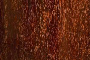帝王之木紫檀:一直被模仿,从未被超越