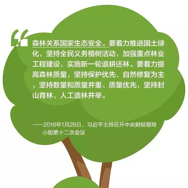 植树造林高清图片