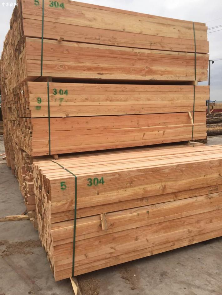 2019年四大类林产品质量受监测