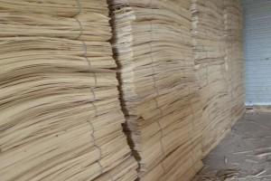 杨木板皮,襄阳杨木板皮供应