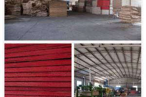 厂家直销永胜  胶合板厂建筑模板 清水模板多次使用