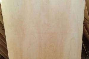 杨木板皮价格