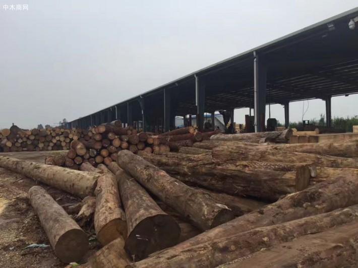 惠东建筑模板夹板厂家,惠东建筑木方厂,惠东进口木方加工
