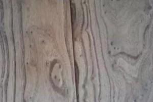 知识 _ 有备而无患!一篇文章解读木材各类缺陷及应对措施!
