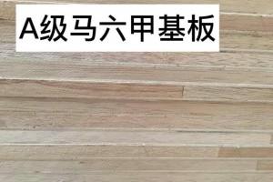 临沂桐木生态板厂家直销