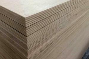 杨桉生态板,全桉基材生态板高清图片