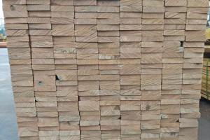 广东市场印尼菠萝格木板材价格行情_2019年04月22日