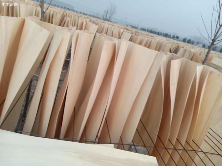杨木三拼木皮实物图片