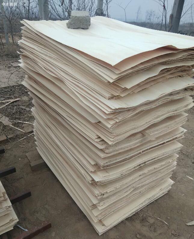 江苏徐州丰县五军木业是一家专业生产丰县杨木三拼,杨木板皮,杨木单板,杨木夹心板的知名品牌企业