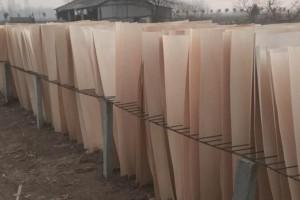 徐州杨木三拼杨木夹芯板优质厂家