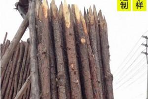 松木桩 圆木柱 原木桩 园林建设河道打木桩 可削尖