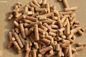 木质颗粒生产是澳大利亚的一个出口增长点