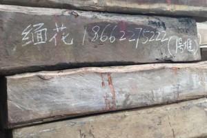 苏州松滋木业缅甸花梨木原木高清图片