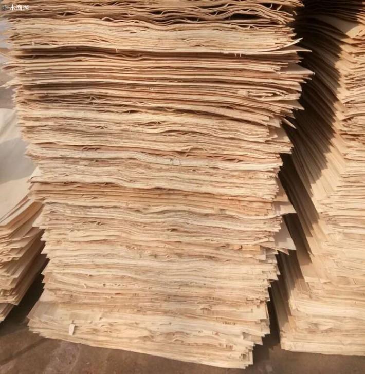 新鲜出炉徐州杨木板皮子大量销售